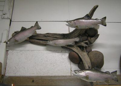 Fish Mount 20