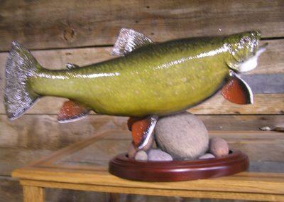 Fish Mount 22